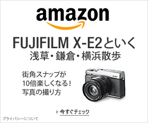 Fujifilm_richleef_graphic_300x250