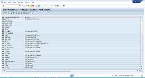 SAP_EFS03