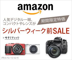 Sale201509_assoc300x250