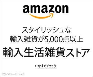 Import-store_asoc300x250