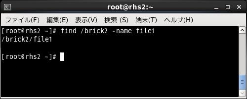 05.rhs_brick_find